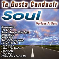 Te Gusta Conducir   Soul