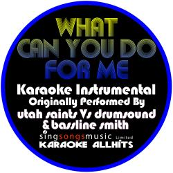 What Can You Do for Me (Originally Performed By Utah Saints vs Drumsound & Bassline Smith) [Instrumental Version]