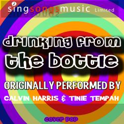 Drinking from the Bottle (Originally Performed By Calvin Harris & Tinie Tempah) [Karaoke Version]