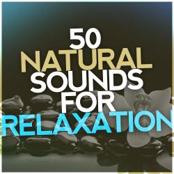 50 Natural Sounds for Relaxation: Rehabilitive Ambience